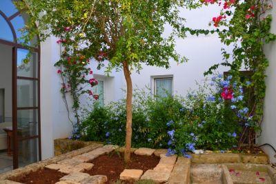 Il giardino dei fiori