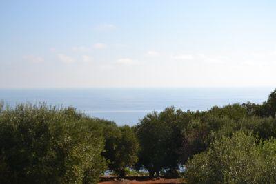 Bellissima Paiara vista mare