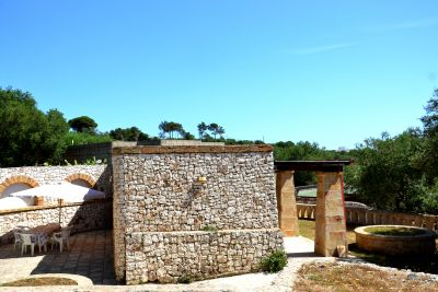 Pajara Stella Marina