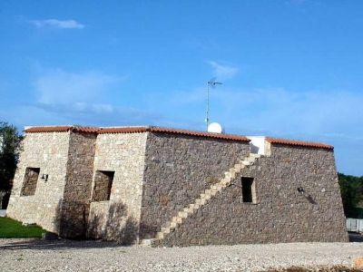Pajara Rosmarino